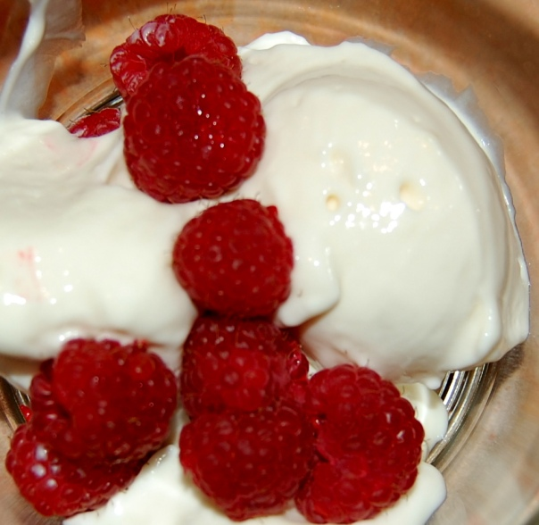 Frozen Lemon Desert with Raspberries